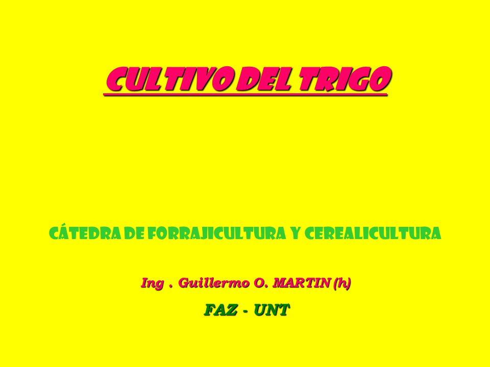 BREVES CONCEPTOS DE LA TÉCNICA DEL CULTIVO 2.