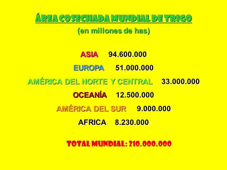 Rendimiento Mundial de Trigo (en kgs./ha) HOLANDA 9.100 EGIPTO 6.150 HOLANDA 9.100 EGIPTO 6.150 BÉLGICA 8.300 MÉXICO 4.788 BÉLGICA 8.300 MÉXICO 4.788 INGLATERRA 7.800 CHILE 4.360 INGLATERRA 7.800 CHILE 4.360 DINAMARCA 7.800 CHINA 3.900 DINAMARCA 7.800 CHINA 3.900 ALEMANIA 6.500 BRASIL 2.170 ALEMANIA 6.500 BRASIL 2.170 FRANCIA 6.200 ARGENTINA 2.100 FRANCIA 6.200 ARGENTINA 2.100 PROMEDIO MUNDIAL: 2.680 kgs./ha
