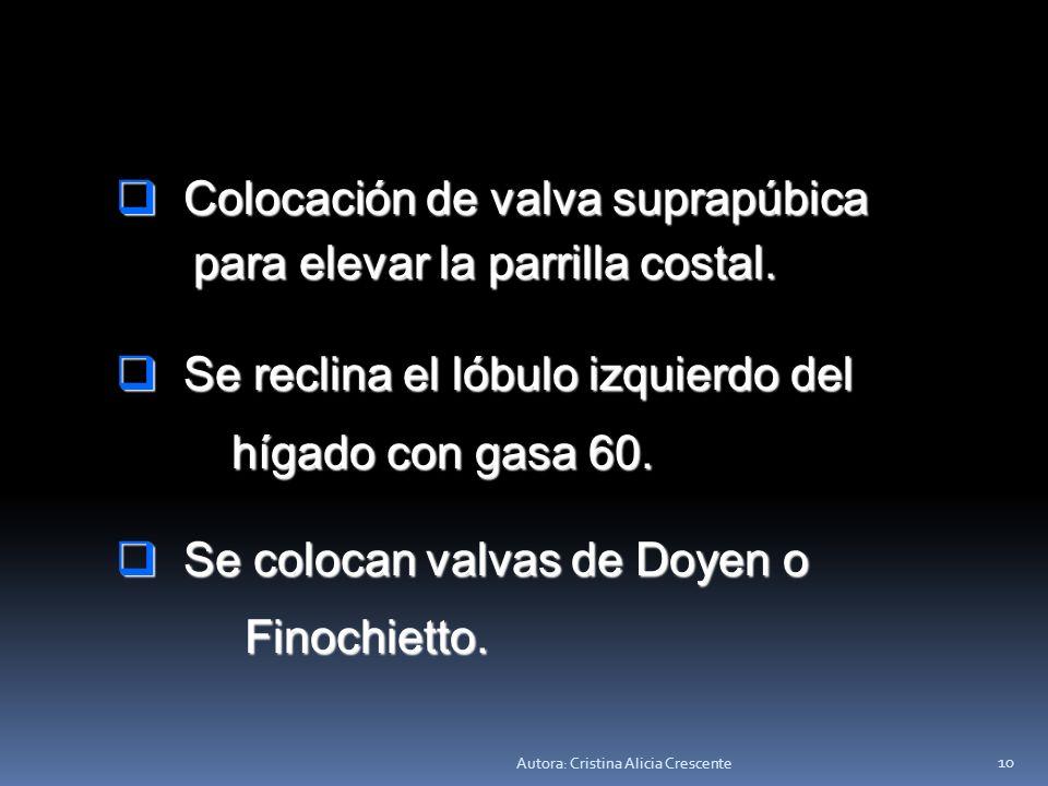 Autora: Cristina Alicia Crescente 9 Incisión de aponeurosis. Incisión de aponeurosis. Incisión de músculo. Incisión de músculo. Incisión de peritoneo.