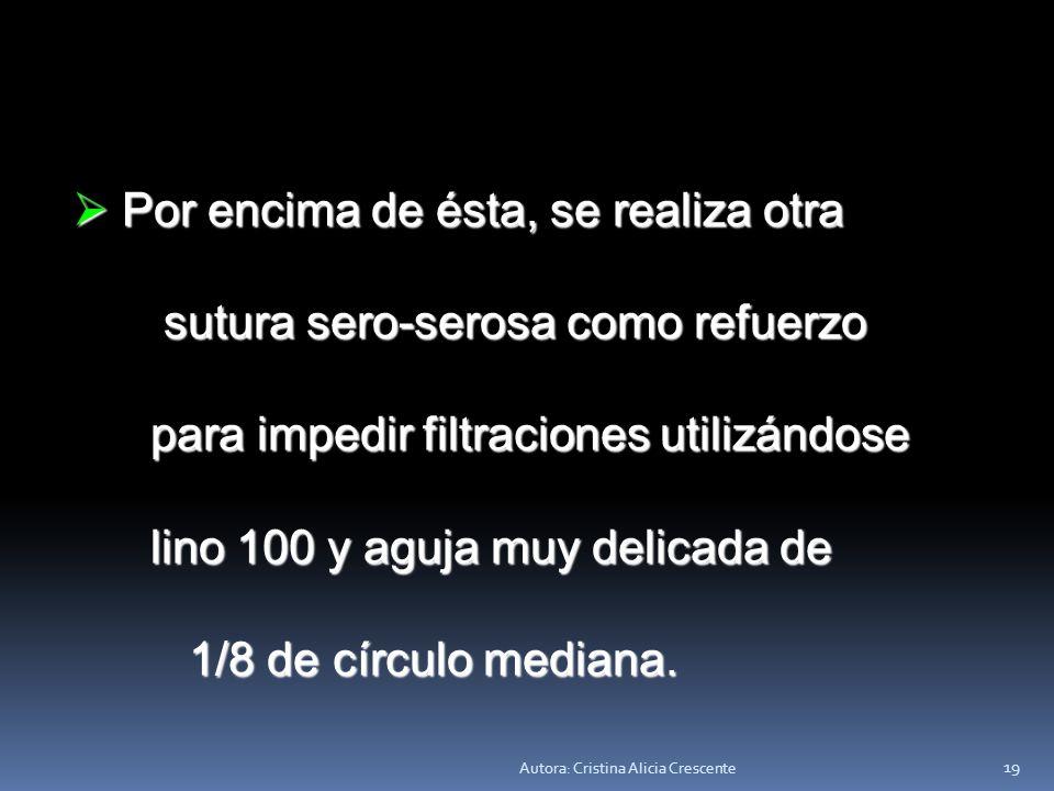 Autora: Cristina Alicia Crescente 18 Se realizan suturas Se realizan suturas perforantes total o perforantes total o seromuscular con Poliglactina ser