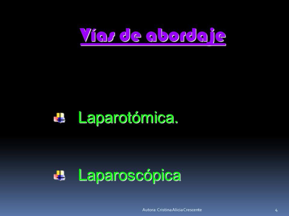 Autora: Cristina Alicia Crescente 4 Vías de abordaje Vías de abordaje Laparotómica.