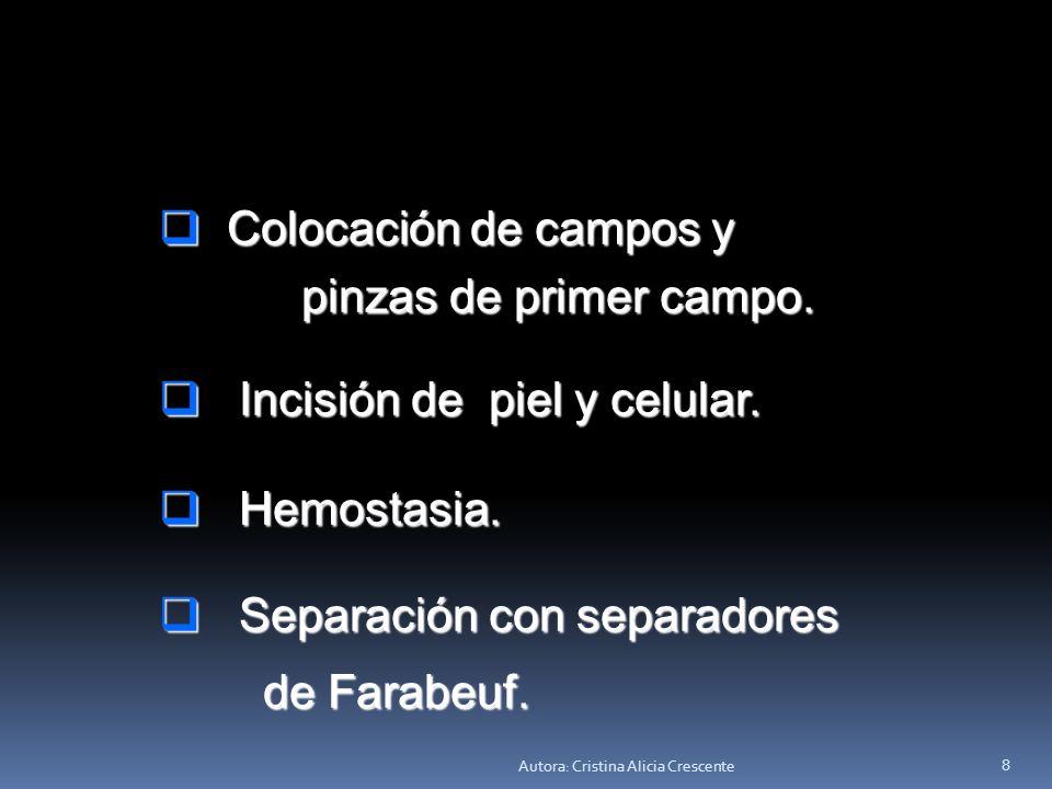 Autora: Cristina Alicia Crescente 7 GASTRECTOMÍA TOTAL GASTRECTOMÍA TOTAL Técnica quirúrgica Técnica quirúrgica Anestesia: general Anestesia: general