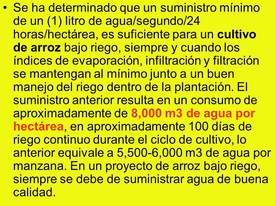 Se ha determinado que un suministro mínimo de un (1) litro de agua/segundo/24 horas/hectárea, es suficiente para un cultivo de arroz bajo riego, siemp