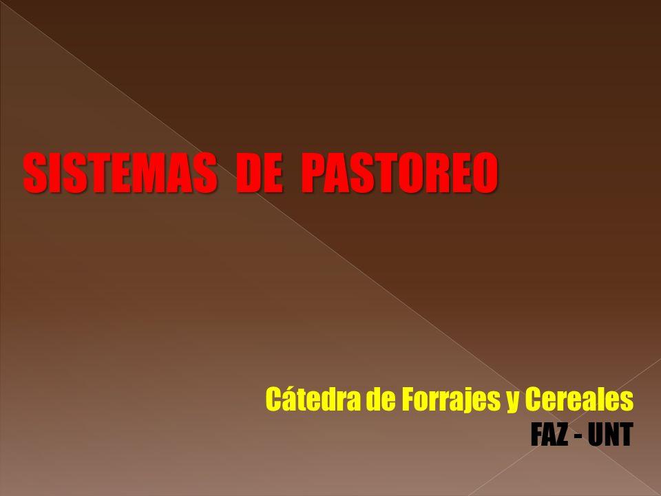 SISTEMAS DE PASTOREO Cátedra de Forrajes y Cereales FAZ - UNT
