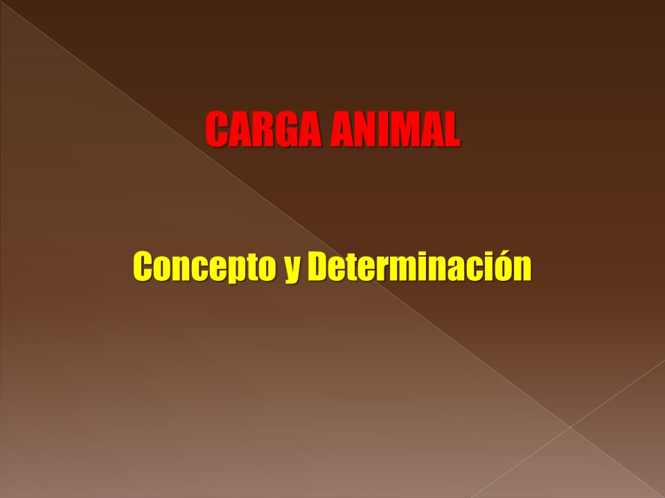 CARGA ANIMAL Concepto y Determinación