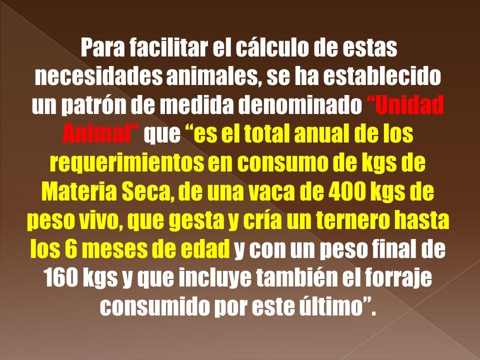 Para facilitar el cálculo de estas necesidades animales, se ha establecido un patrón de medida denominado Unidad Animal que es el total anual de los r