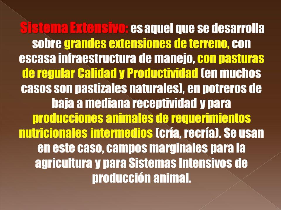 Sistema Extensivo: Sistema Extensivo: es aquel que se desarrolla sobre grandes extensiones de terreno, con escasa infraestructura de manejo, con pastu