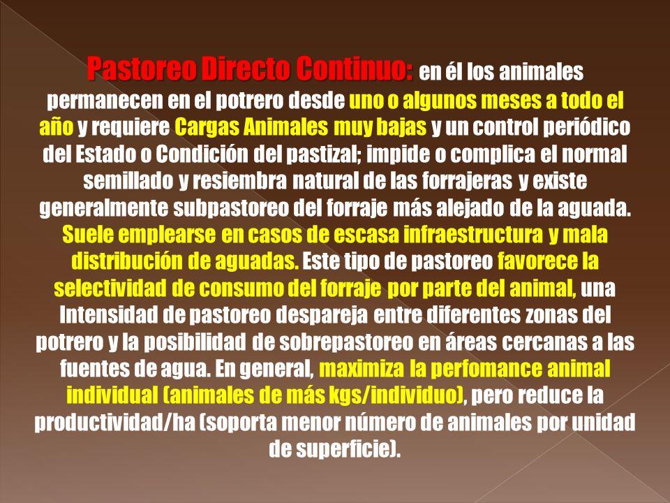 Pastoreo Directo Continuo: Pastoreo Directo Continuo: en él los animales permanecen en el potrero desde uno o algunos meses a todo el año y requiere C