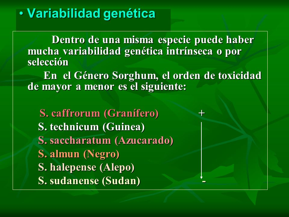 Variabilidad genética Variabilidad genética Dentro de una misma especie puede haber mucha variabilidad genética intrínseca o por selección Dentro de u