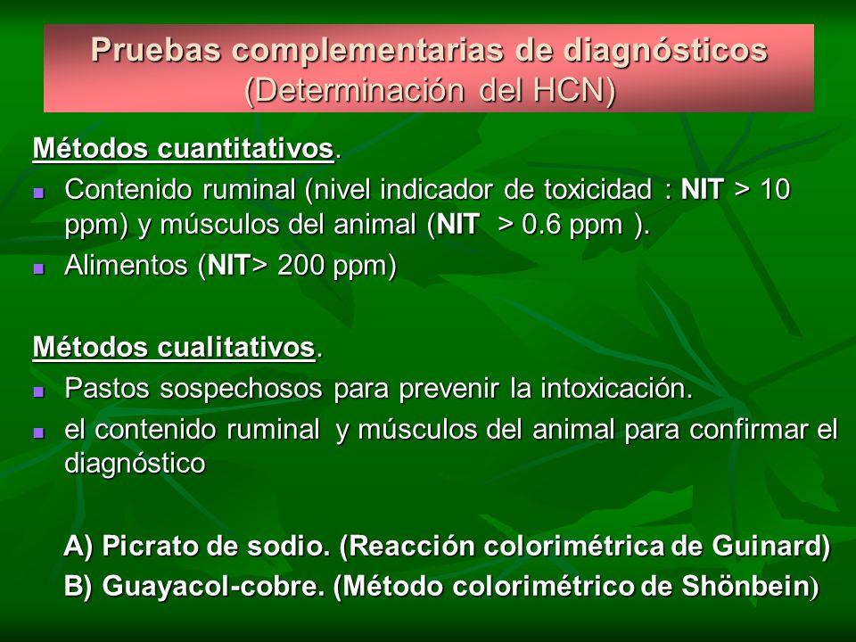 Pruebas complementarias de diagnósticos (Determinación del HCN) Métodos cuantitativos. Contenido ruminal (nivel indicador de toxicidad : NIT > 10 ppm)