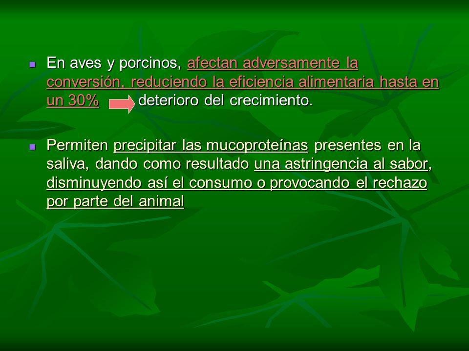 En aves y porcinos, afectan adversamente la conversión, reduciendo la eficiencia alimentaria hasta en un 30% deterioro del crecimiento. En aves y porc