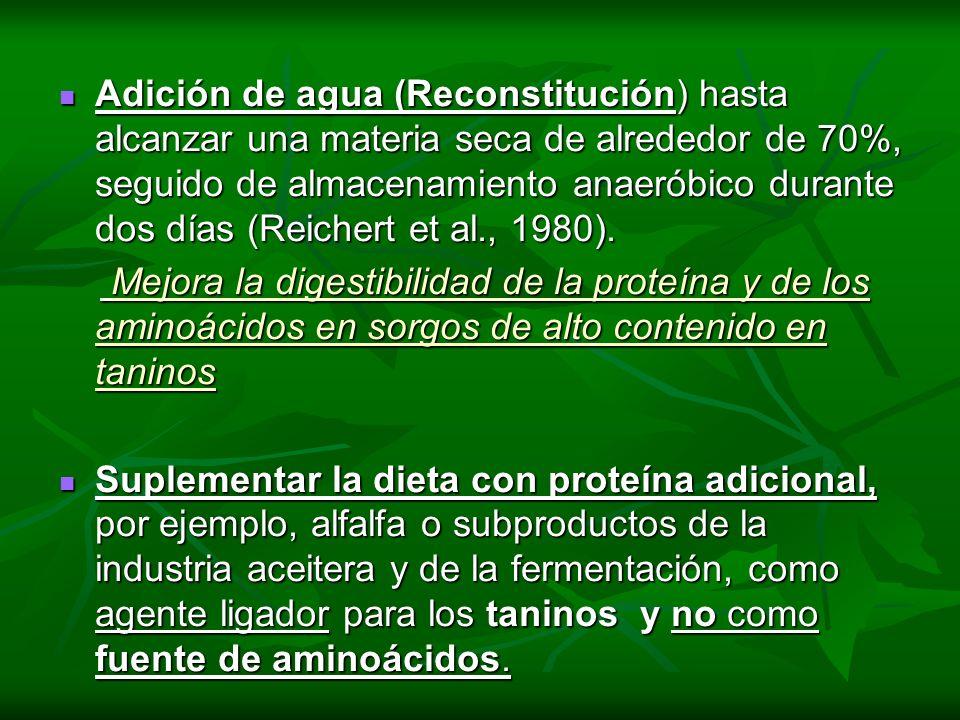 Adición de agua (Reconstitución) hasta alcanzar una materia seca de alrededor de 70%, seguido de almacenamiento anaeróbico durante dos días (Reichert