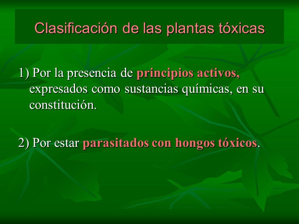 Clasificación de las plantas tóxicas 1) Por la presencia de principios activos, expresados como sustancias químicas, en su constitución. 2) Por estar