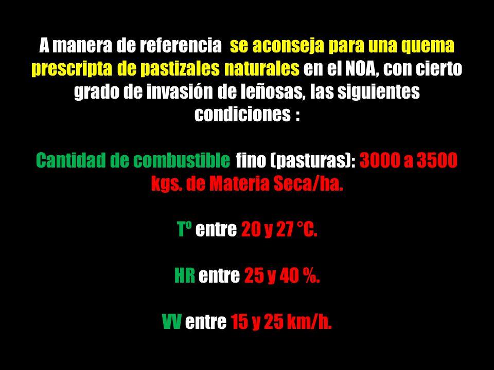 A manera de referencia se aconseja para una quema prescripta de pastizales naturales en el NOA, con cierto grado de invasión de leñosas, las siguiente