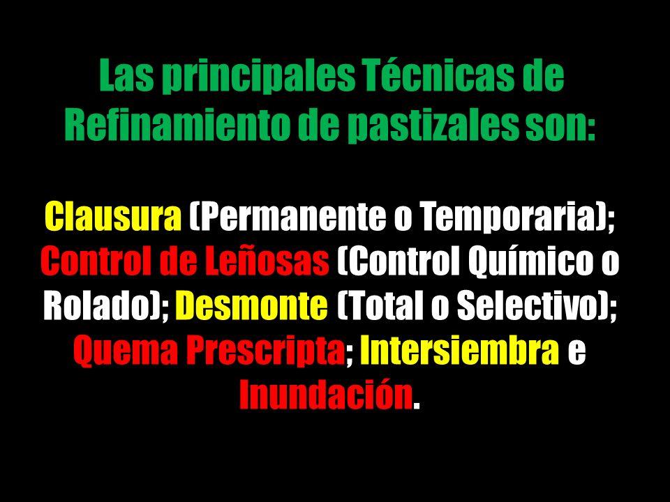 Las principales Técnicas de Refinamiento de pastizales son: Clausura (Permanente o Temporaria); Control de Leñosas (Control Químico o Rolado); Desmont