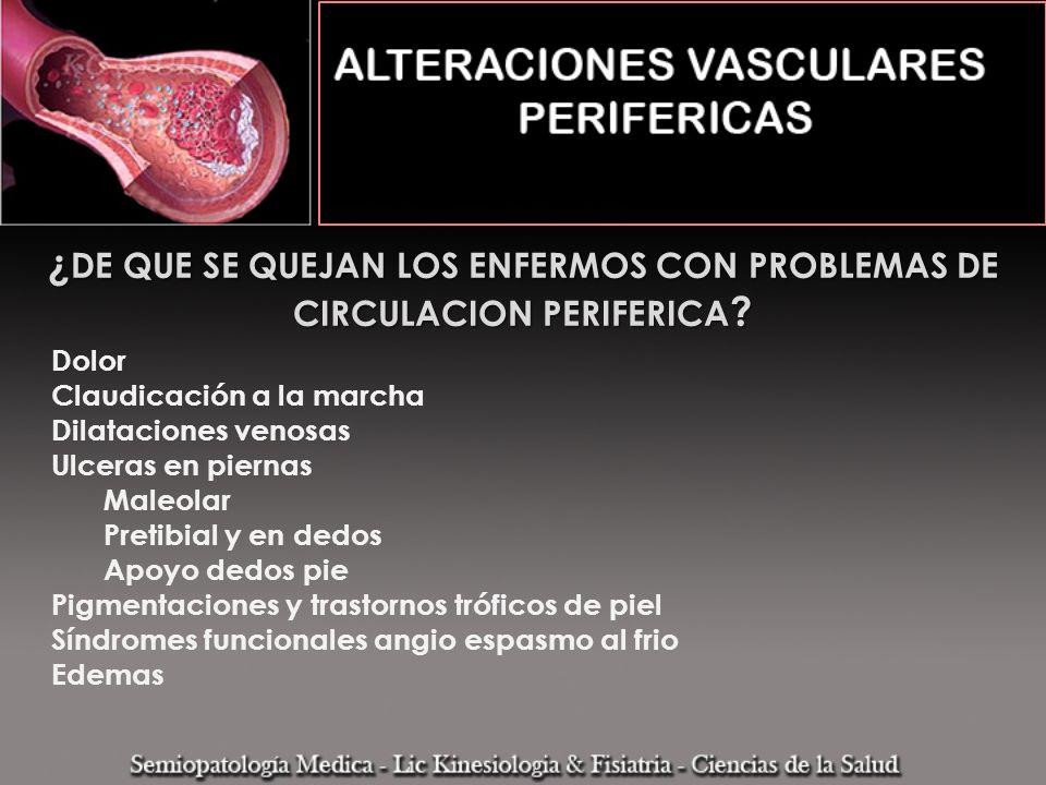 ¿ DE QUE SE QUEJAN LOS ENFERMOS CON PROBLEMAS DE CIRCULACION PERIFERICA ? Dolor Claudicación a la marcha Dilataciones venosas Ulceras en piernas Maleo