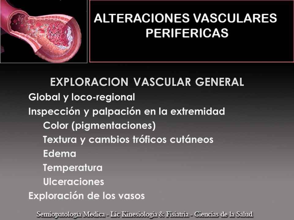 EXPLORACION VASCULAR GENERAL Global y loco-regional Inspección y palpación en la extremidad Color (pigmentaciones) Textura y cambios tróficos cutáneos