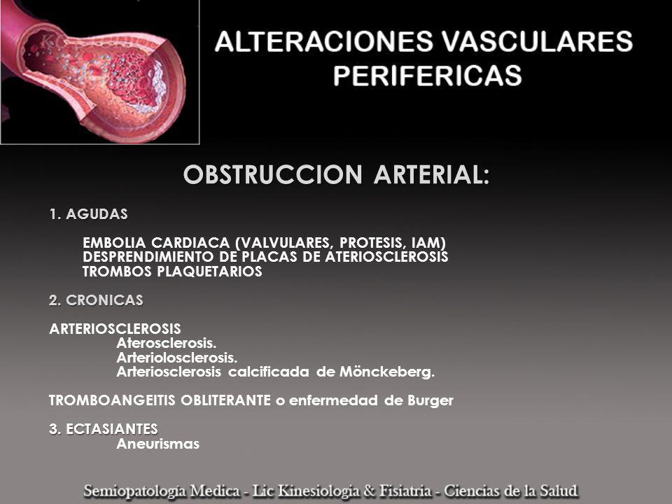 AGUDA Dolor Impotencia funcional AnestesiaCRONICA Claudicación intermitente Frialdad Paresia MANIFESTACIONES CLINICAS GENERALES DE LA OBSTRUCCION ARTERIAL