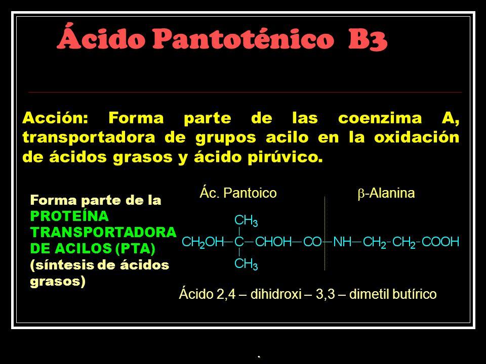 Ácido Pantoténico B3 Acción: Forma parte de las coenzima A, transportadora de grupos acilo en la oxidación de ácidos grasos y ácido pirúvico. Ác. Pant