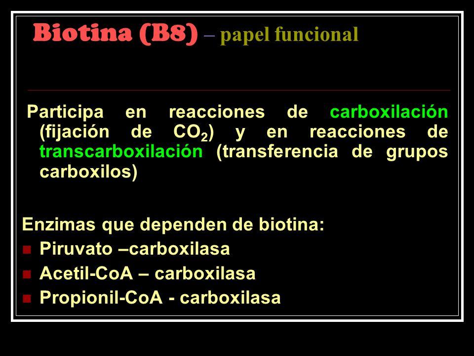 Biotina (B8) – papel funcional Participa en reacciones de carboxilación (fijación de CO 2 ) y en reacciones de transcarboxilación (transferencia de gr