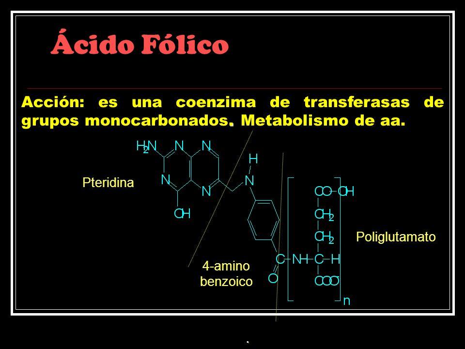 Ácido Fólico. Acción: es una coenzima de transferasas de grupos monocarbonados. Metabolismo de aa. Pteridina 4-amino benzoico Poliglutamato.