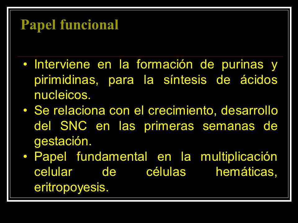 Papel funcional Interviene en la formación de purinas y pirimidinas, para la síntesis de ácidos nucleicos. Se relaciona con el crecimiento, desarrollo