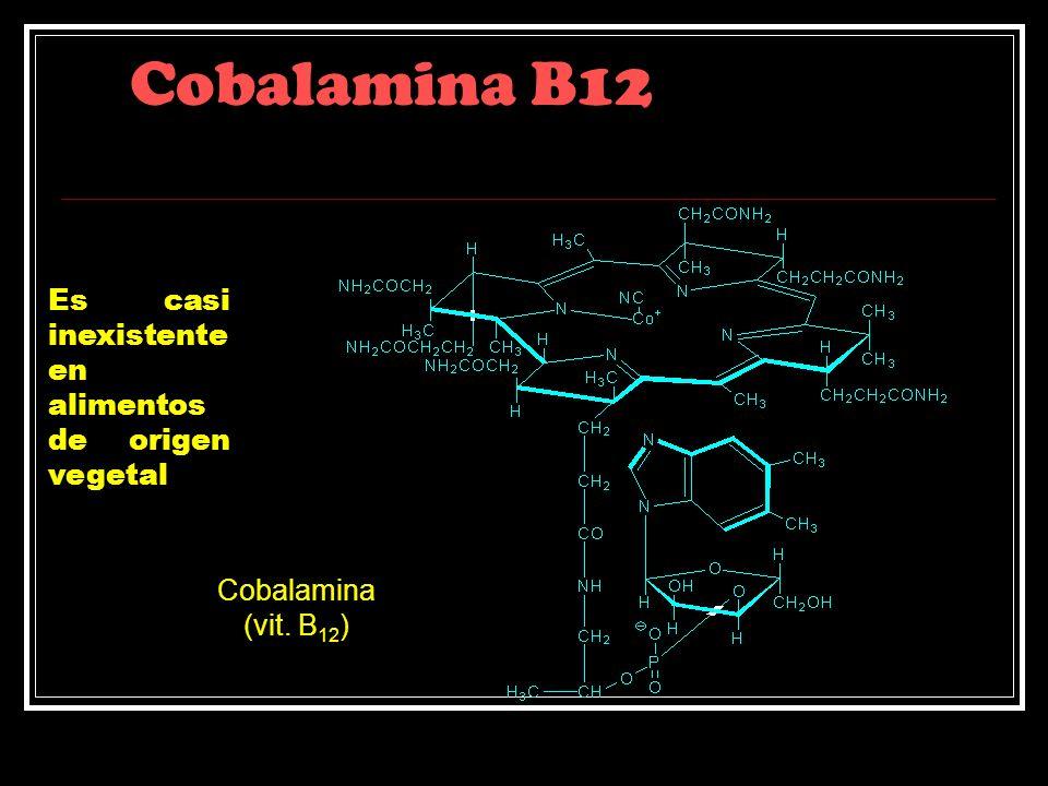 Cobalamina B12 Es casi inexistente en alimentos de origen vegetal Cobalamina (vit. B 12 )