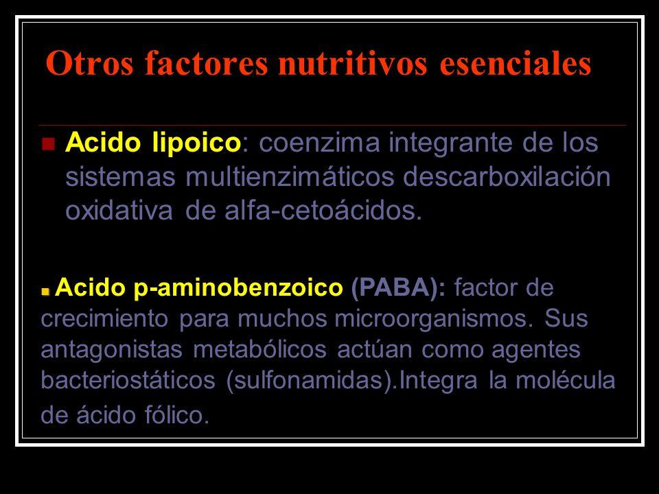 Otros factores nutritivos esenciales Acido lipoico: coenzima integrante de los sistemas multienzimáticos descarboxilación oxidativa de alfa-cetoácidos
