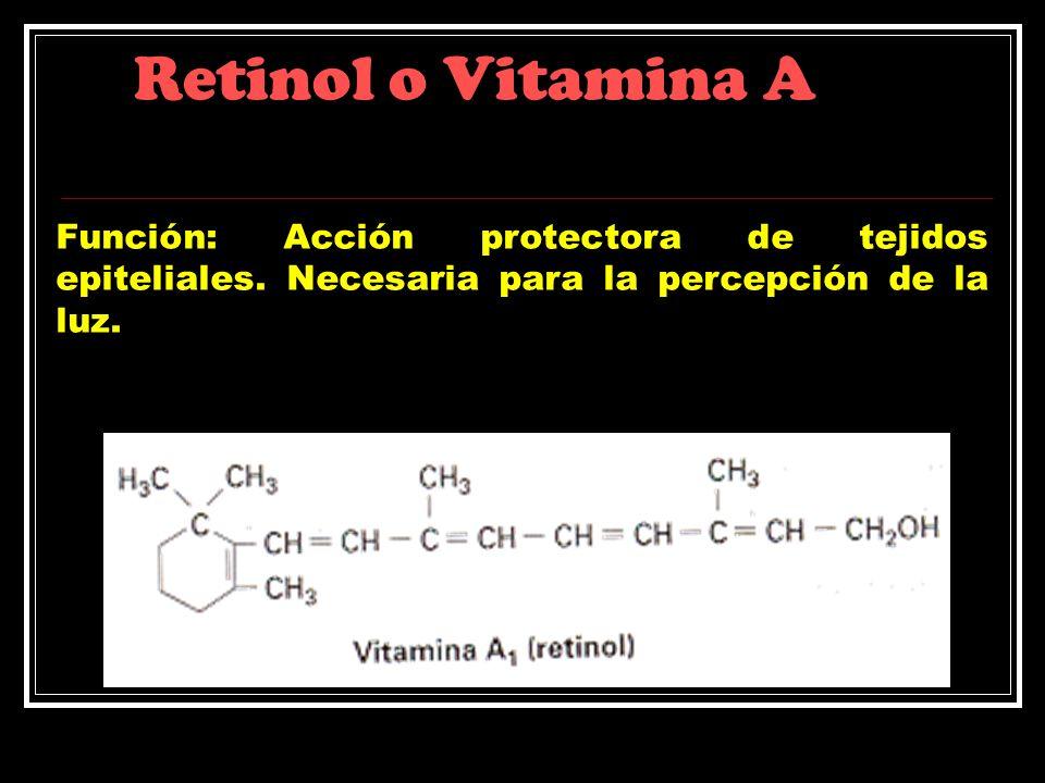 Retinol o Vitamina A Función: Acción protectora de tejidos epiteliales. Necesaria para la percepción de la luz.