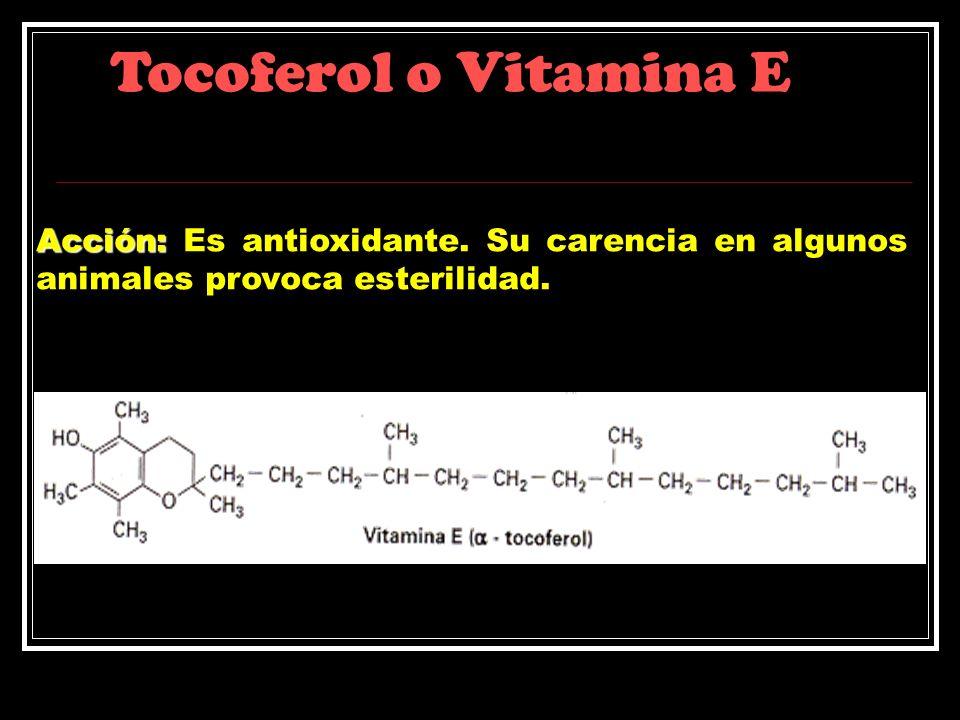 Tocoferol o Vitamina E Acción: Acción: Es antioxidante. Su carencia en algunos animales provoca esterilidad.