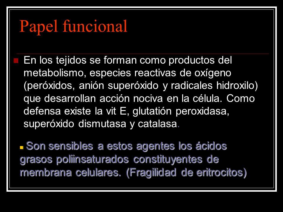 Papel funcional En los tejidos se forman como productos del metabolismo, especies reactivas de oxígeno (peróxidos, anión superóxido y radicales hidrox