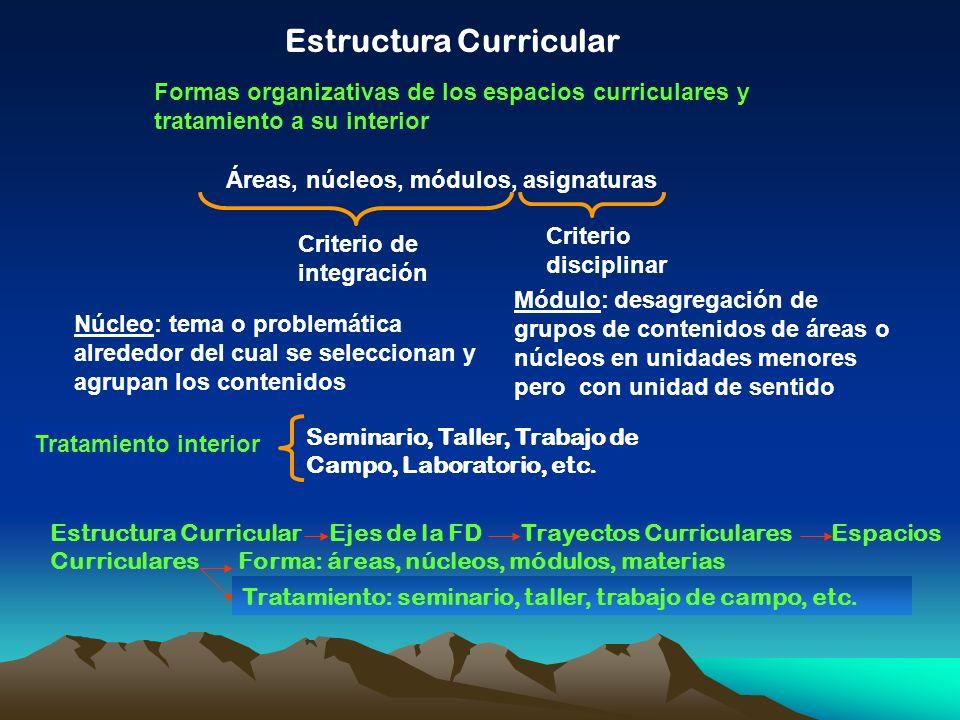 Estructura Curricular Formas organizativas de los espacios curriculares y tratamiento a su interior Áreas, núcleos, módulos, asignaturas Criterio de i