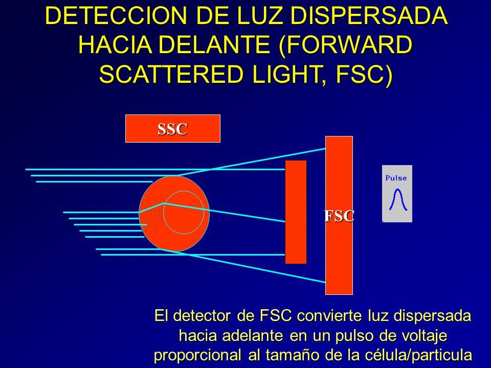 DETECCION DE LUZ DISPERSADA HACIA DELANTE (FORWARD SCATTERED LIGHT, FSC) FSC SSC El detector de FSC convierte luz dispersada hacia adelante en un puls