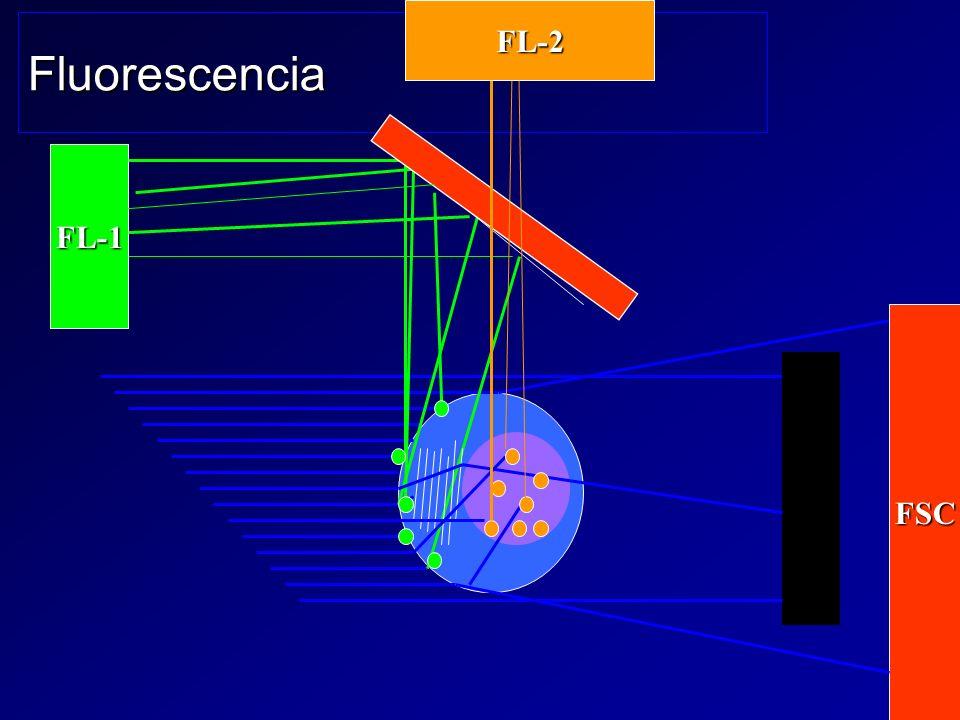 Fluorescencia FSC FL-1 FL-2