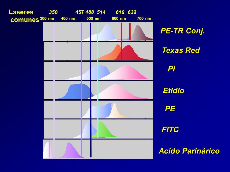 Etidio PE Acido Parinárico Texas Red PE-TR Conj. PI FITC 600 nm300 nm500 nm700 nm400 nm 457350514610632488 Laseres comunes