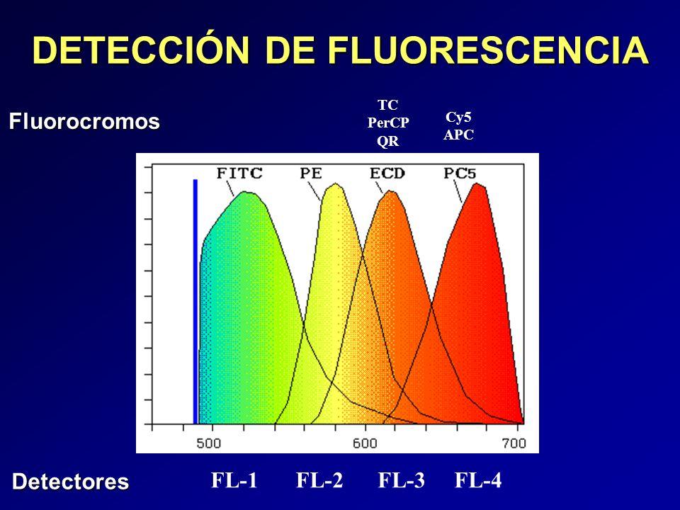 DETECCIÓN DE FLUORESCENCIA TC PerCP QR Cy5 APC FL-1FL-2FL-3FL-4 Detectores Fluorocromos