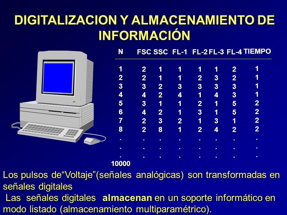 DIGITALIZACION Y ALMACENAMIENTO DE INFORMACIÓN N12345678...10000 FSC22343422...SSC11221238...FL-111341121...FL-212312312...FL-313341134...FL-422335512