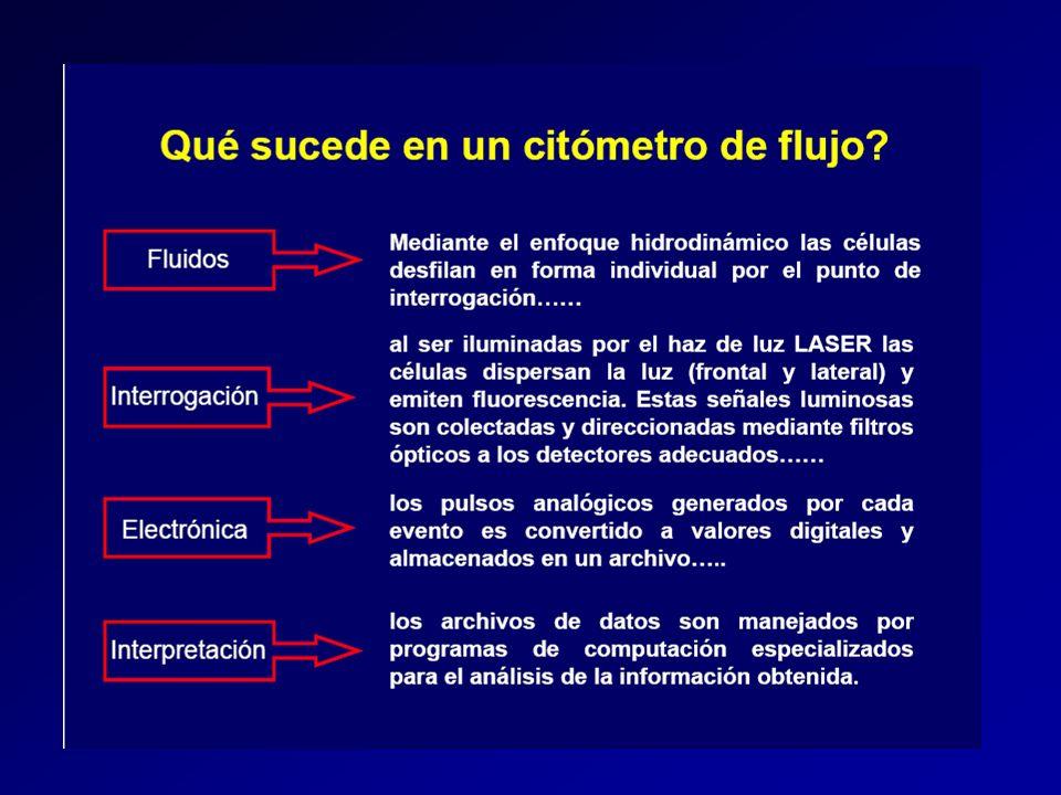 Proceso de señales 1.Separación de señales luminosas 1.