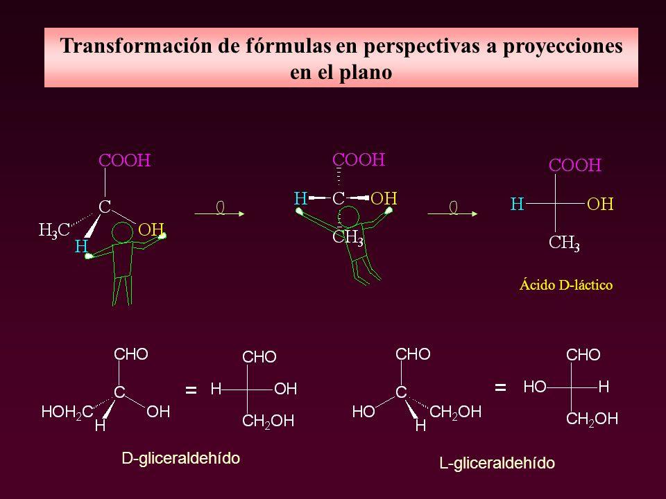 Transformación de fórmulas en perspectivas a proyecciones en el plano Ácido D-láctico D-gliceraldehído L-gliceraldehído