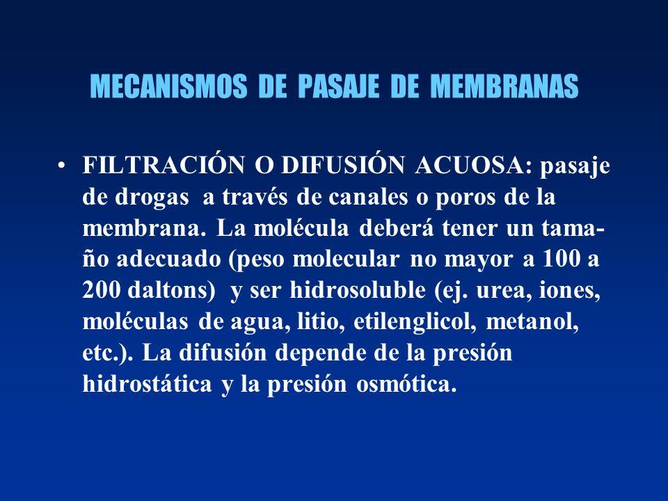 MECANISMOS DE PASAJE DE MEMBRANAS FILTRACIÓN O DIFUSIÓN ACUOSA: pasaje de drogas a través de canales o poros de la membrana. La molécula deberá tener