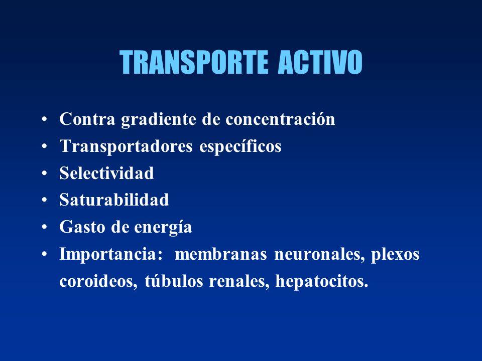 TRANSPORTE ACTIVO Contra gradiente de concentración Transportadores específicos Selectividad Saturabilidad Gasto de energía Importancia: membranas neu
