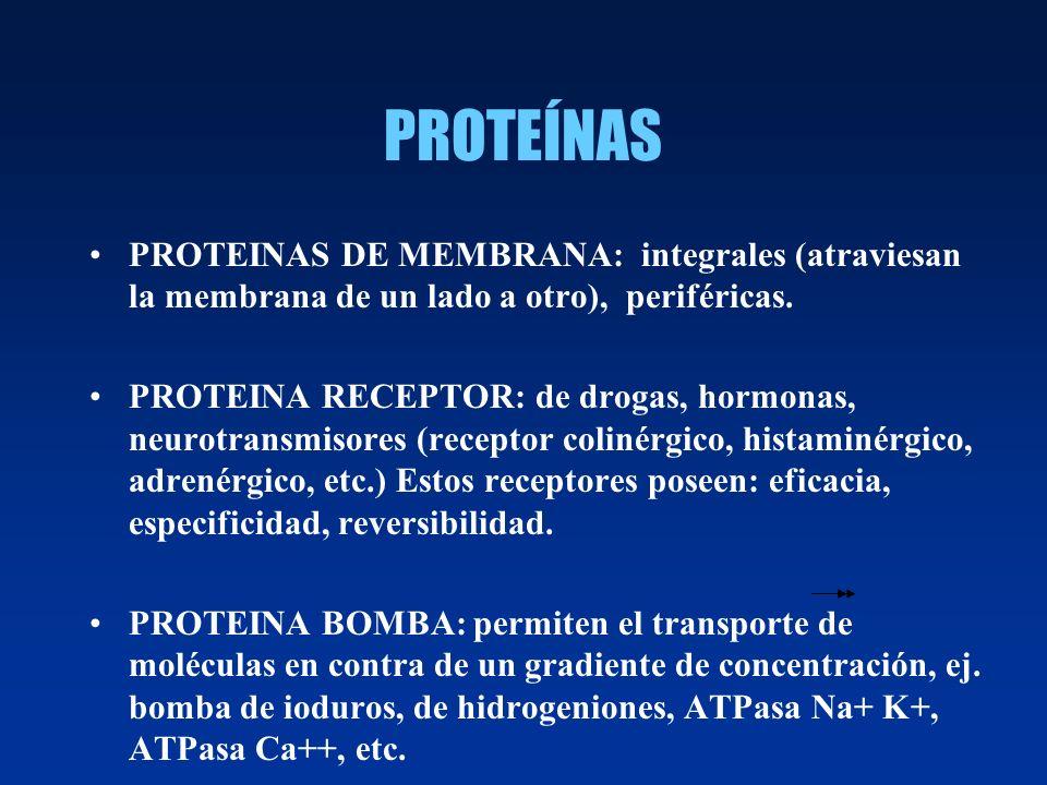 PROTEÍNAS PROTEINAS DE MEMBRANA: integrales (atraviesan la membrana de un lado a otro), periféricas. PROTEINA RECEPTOR: de drogas, hormonas, neurotran