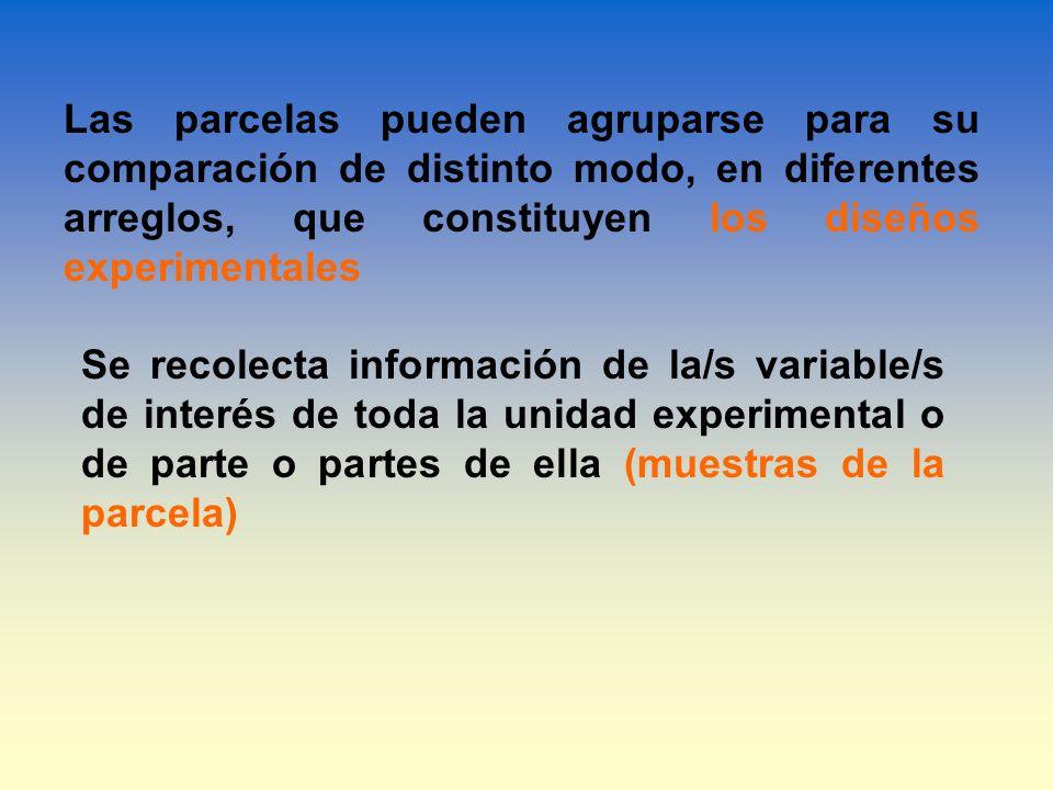 Se recolecta información de la/s variable/s de interés de toda la unidad experimental o de parte o partes de ella (muestras de la parcela) Las parcela