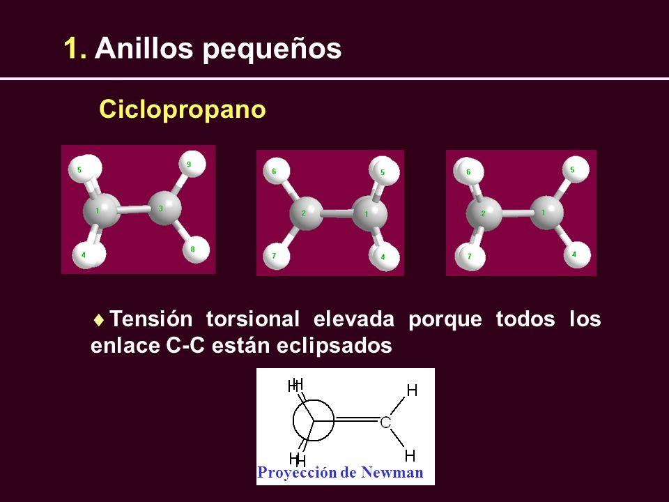 1. Anillos pequeños Tensión torsional elevada porque todos los enlace C-C están eclipsados Ciclopropano Proyección de Newman