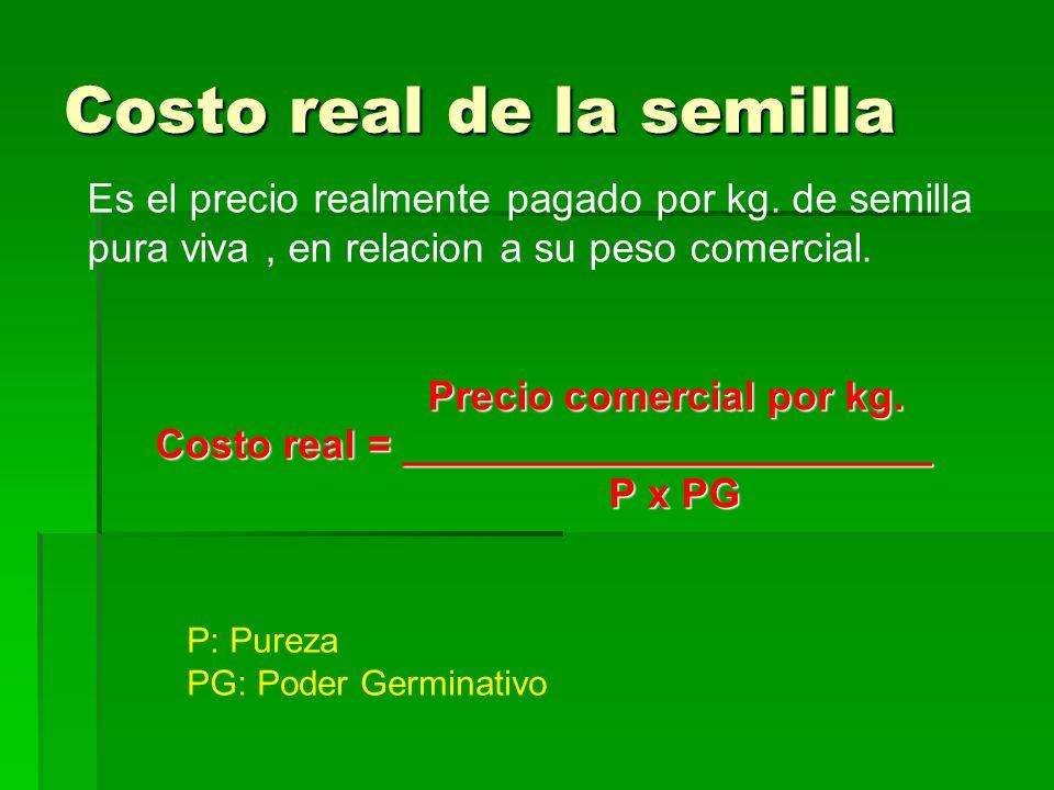 Costo real de la semilla Es el precio realmente pagado por kg. de semilla pura viva, en relacion a su peso comercial. Precio comercial por kg. Precio