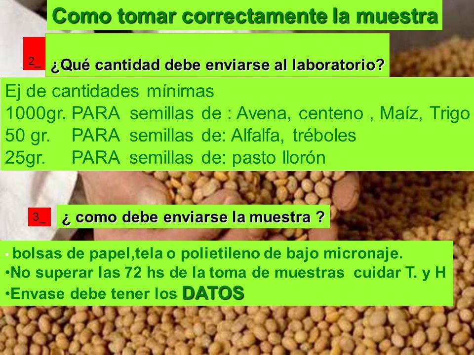 Como tomar correctamente la muestra 2_ ¿Qué cantidad debe enviarse al laboratorio? Ej de cantidades mínimas 1000gr. PARA semillas de : Avena, centeno,