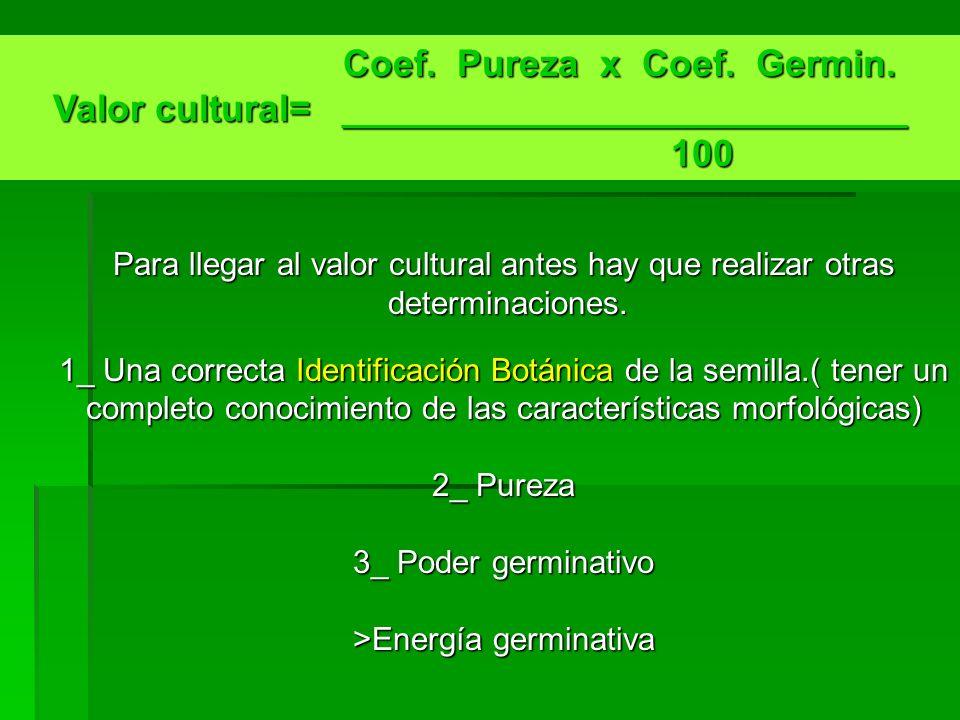 Coef. Pureza x Coef. Germin. Coef. Pureza x Coef. Germin. Valor cultural= ___________________________ 100 100 Para llegar al valor cultural antes hay