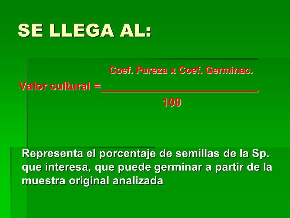 SE LLEGA AL: Coef. Pureza x Coef. Germinac. Coef. Pureza x Coef. Germinac. Valor cultural =_________________________ Valor cultural =_________________