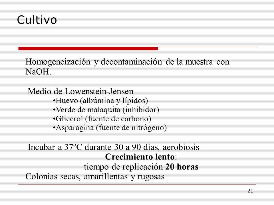 21 Cultivo Homogeneización y decontaminación de la muestra con NaOH. Medio de Lowenstein-Jensen Huevo (albúmina y lípidos) Verde de malaquita (inhibid