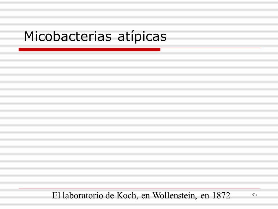 35 Micobacterias atípicas El laboratorio de Koch, en Wollenstein, en 1872